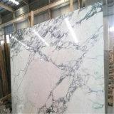 平板のカラーラの白い大理石の白の低価格
