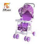Kundenspezifischer Baby-Spaziergänger vom Baby-Spaziergänger-Hersteller