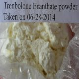 Trenbolone Enanthate Trenbolone Enanthate Trenbolone Enanthate