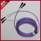 12 maschio piano della fibra MPO di schiera ai cavi ottici maschii del circuito di collegamento della zona di MPO