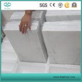 Het Wit van Carrara/Wit/Opgepoetst Marmeren/Wit Marmeren/Oosters Wit Marmer Statuario voor Tegel/Plak/Trede/Betreden/Baluster/Gootsteen/Monument/Vaas/Bassin