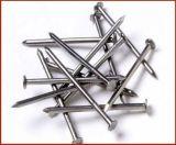 Clous concrets de qualité avec du matériau d'acier à faible teneur en carbone