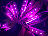 5050 3LEDs 렌즈 없는 밝은 주입 LED 모듈