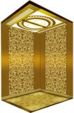 La trazione Gearless Vvvf guida a casa l'elevatore della villa (RLS-237)