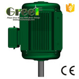 120/220/230/380VAC DreiphasenPmg für Wind-und Wasser-Turbine