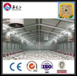 Camera 2017 di pollo d'acciaio dell'indicatore luminoso famoso di marca della Cina con la parete ondulata dell'isolamento della lamiera di acciaio e di vetro di fibra (XGZ-0803)