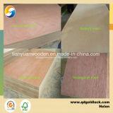 Contre-plaqué commercial de faisceau de peuplier (GL104)