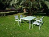 Insieme di vimini del sofà del rattan del patio del patio del PE sezionale esterno della mobilia