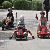Los cabritos adultos que mandilan competir con del coche 350W 36V van Kart