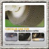 대리석, 화강암, 모래 돌 Dh를 위한 다이아몬드 세그먼트