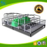 Schwein-Landwirtschaft-Pflanzenschule-Rahmen-Schwein-Säen-Bett