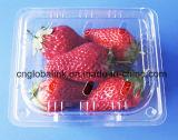 caja plástica de la fruta del envase de plástico del arándano 250g