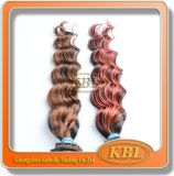 Hair Weft Brazilian Highlight Virgin Hair