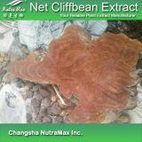 100% Naturalnet Cliffbean извлечения (5 - 1 10 1 20: 1)