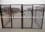 Polvere di colore o PVC nera che ricopre la fossa di scolo del cane/gabbia esterne del cane