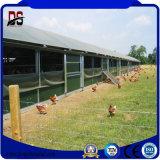 Ferme avicole préfabriquée de poulet de structure métallique jetée avec la conformité de TUV