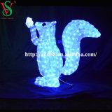 3D Moitf Iluminación LED Acrílico Ardilla