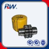 Elektrophoretische Beschichtung-Kettenkupplung (6016, 8012)