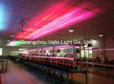 La IGUALDAD de Vello 18PCS RGB LED puede lavar la luz al aire libre de la IGUALDAD (LED PSD 318II)