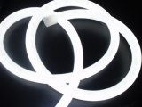 Indicatore luminoso al neon della corda della flessione del LED--Lsn, colore bianco