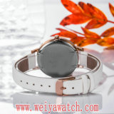 Hot Sale occasionnel quartz watch Fashion Mesdames Montres (Wy-17029C)