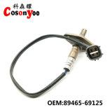 자동 산소 센서. OEM: 89465-69125, Geely 의 해리 시리즈