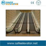 Escada rolante da economia de energia do passageiro