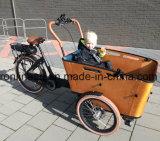250With500W 8funの中間モーターElektrische Bakfietsenまたは貨物E自転車またはグループは貨物Trikeか子供三輪車またはペット輸送Bakfietsか赤ん坊配達電気自転車のセリウムを運ぶ