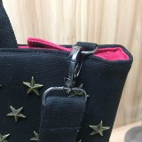 Sacchetto del progettista di ultimo modo delle donne d'avanguardia delle borse