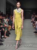 Vestito Sleeveless dalle donne di modo per il disegno del partito