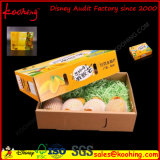 Corrugated Apple Packaging Box / Cartucho ondulado Carton for Fresh Fruit