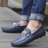 Os homens de alta qualidade calçado de couro Calçado de lazer (FTS1019-28)
