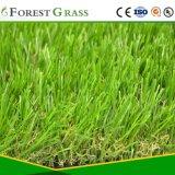 علويّة يبيع عشب اصطناعيّة لأنّ منظر طبيعيّ ([كس])