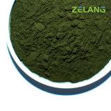 Ficocianina della polvere dell'estratto di Spirulina della maglia della polvere 80 di Spirulina