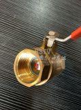 Voller Kanal/gebohrtes MessingbronzeKugelventil des innengewinde-2PC