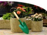 При необходимости семейных сельскохозяйственных Небольшой ковш садоводство стороны Trowel копания