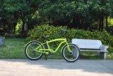 Elektrisches Fahrrad mit Daumen-Drossel