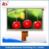 Écran graphique vert jaunâtre de module de l'écran LCD 240*48 d'affichage à cristaux liquides Stn