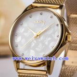 Het horloge past de Horloges van de Gift van het Roestvrij staal (aan wy-027C)