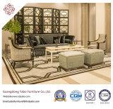 A mobília moderna do hotel da forma com mobília da entrada ajustou-se (YB-CY12-15)
