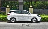 Het nieuwe Elektrische voertuig van de Verkoop van het Ontwerp Hete voor 5 Personen