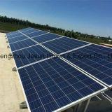 높은 반복 순서 공급자 100W 150W 200W 300W 태양 전지판