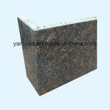 Panneaux en aluminium de nid d'abeilles de couleur de forme ronde de marbre noir de pierre