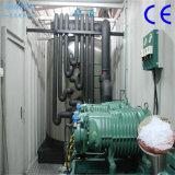 Шэньчжэнь Sindeice экономии энергии 20t контейнерных Ice завод вторичных хлопьев ПЭТ льда