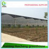 Invernadero profesional del Shading de la alta calidad para la planta y el vehículo