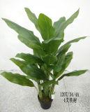 Migliori piante artificiali di vendita della zebra GU1019152518