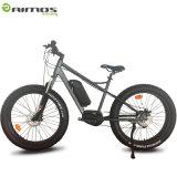 26 vélo électrique du lecteur 48V 500W de Dapu de pouce MI