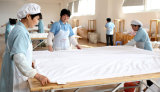 Duvet puro natural Washable certificado Oeko da seda do Comforter da seda de Mulberry do standard alto da série da elegância de Hotsale da neve de Taihu
