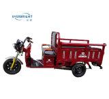 كبيرة قدرة [هي بوور] كهربائيّة درّاجة ثلاثية شحن لأنّ تسليم جيّدة