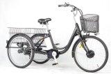 販売(FR-TDM02Z)のための36V250W E-Trike